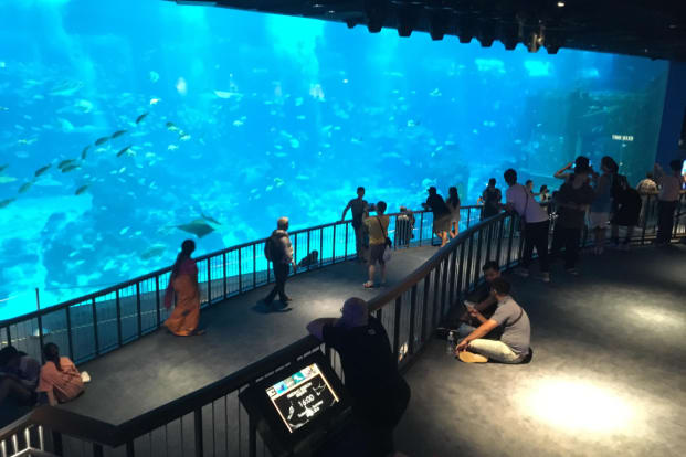 S.E.A Aquarium™
