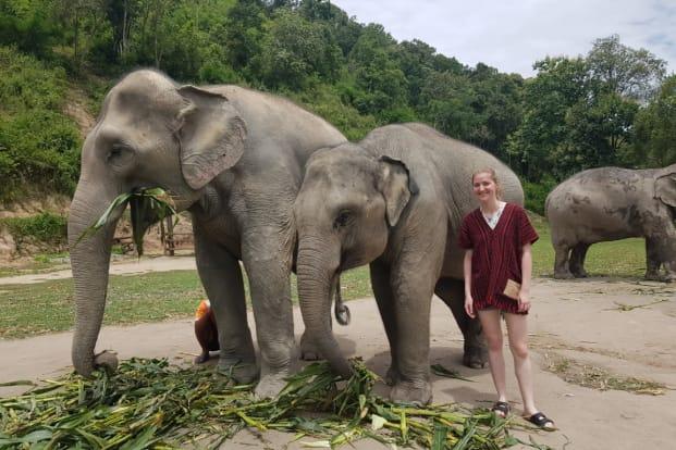 Elephant Jungle Sanctuary Pattaya