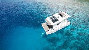 Nyaman Catamaran, Manggarai Barat