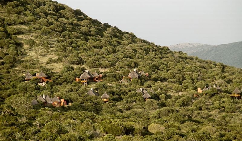 Thanda Private Game Reserve, Umkhanyakude