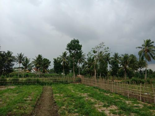 Pondok Tunas Rinjani, Lombok