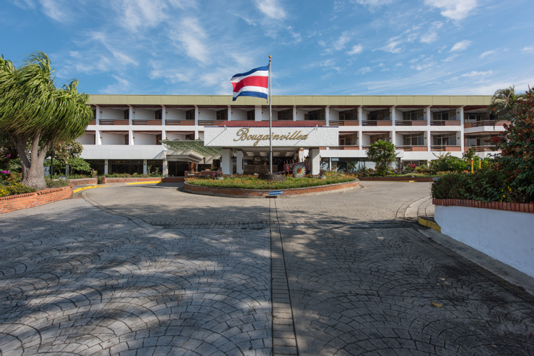Bouganvillea, Santo Domingo