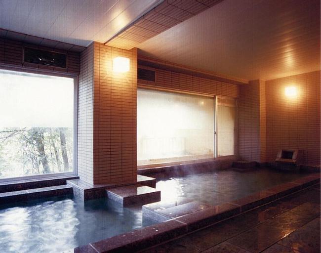 Plaza Hotel Azuma, Fukushima