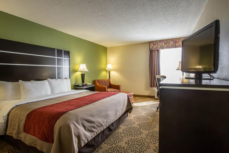 Comfort Inn North of Asheville, Madison