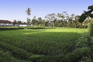 Bali Sunshine Homestay Ubud, Gianyar