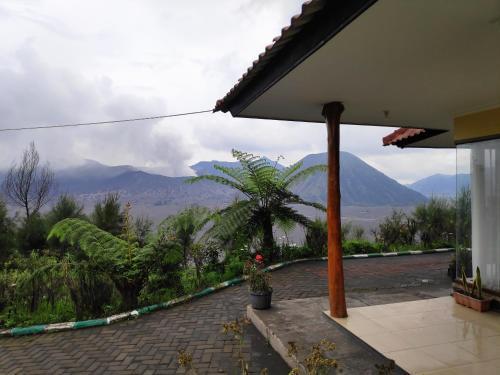 Guesthouse Gunung Bromo, Probolinggo