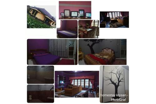 Homestay Krysan, Wonosobo