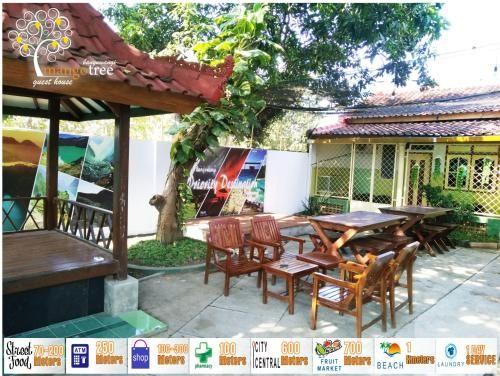 Mango Tree Guest House, Banyuwangi