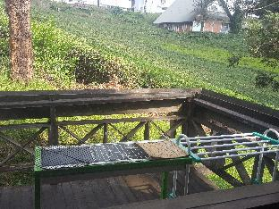 Argapuri Resort di Jungle / Villa di Kebun Teh - 3, Bandung