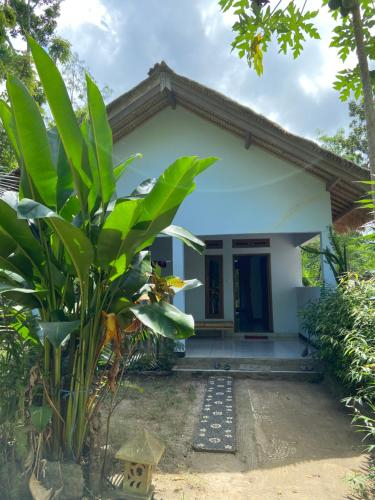Rimba Bungalow, Lombok