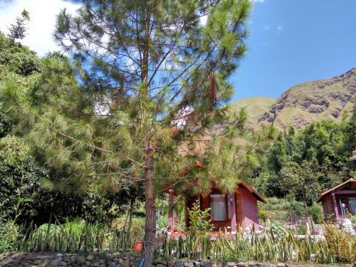 Sembalun Kita Cottage, Lombok