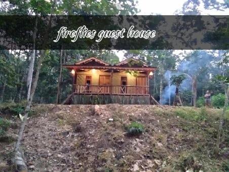 Fireflies Guest House, Langkat