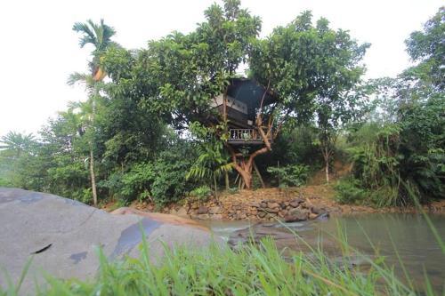 Abe tree house, Padang