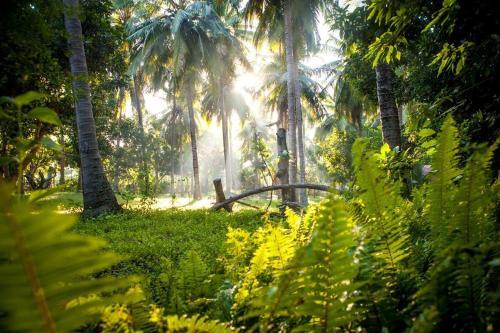 The Wood Garden Bungalows, Sumbawa Barat