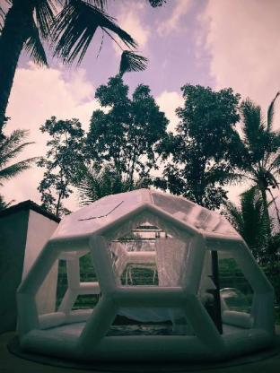Jungle Bubble Lodge Ubud , stay with Nature, Gianyar