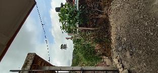 Punakawan Homestay, Kulon Progo