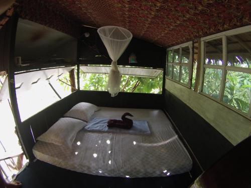 abe tree house/ rumah pohon abe, Padang