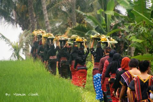 Rahman Homestay, Lombok Timur
