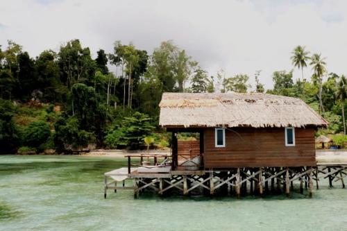 Dcoral Paradise Resort Raja Ampat, Raja Ampat