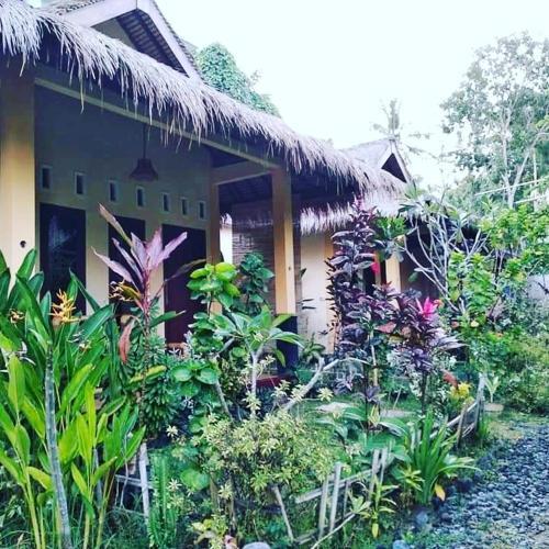 Cewin's Homestay, Lombok