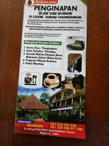 Homestay Erlangga Djoyo, Mojokerto