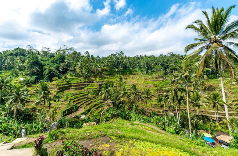 Tri Sandhya Ubud Villa, Gianyar
