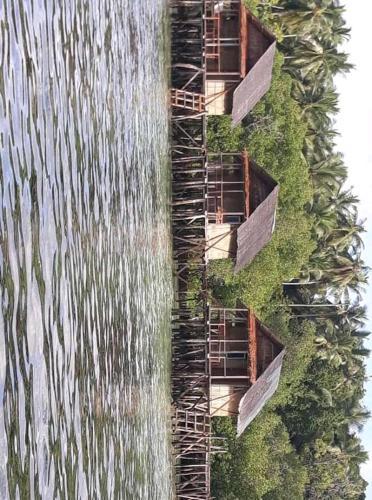 Friwen mangrove homestay, Raja Ampat