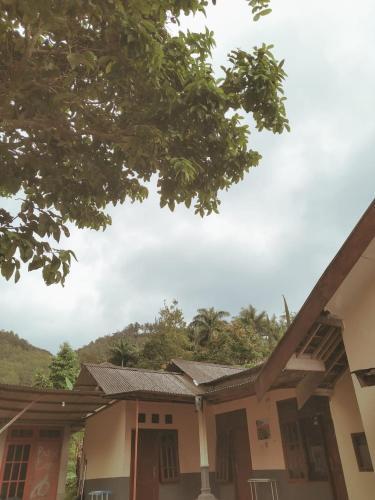 Omahe Toni, Malang