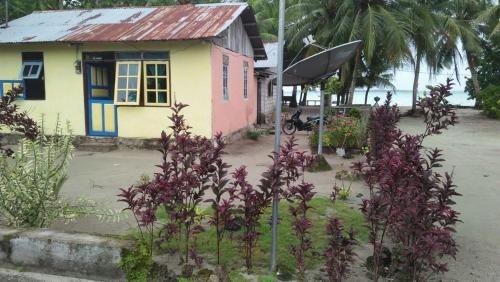 Sarah Cornely Homestay, Maluku Tenggara