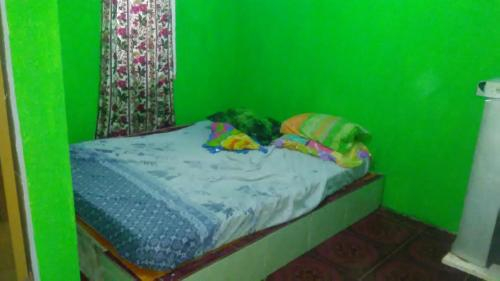 Wak Bendol Guest House, Langkat