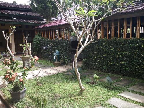 Rumah Daun Homestay Tetebatu, Lombok