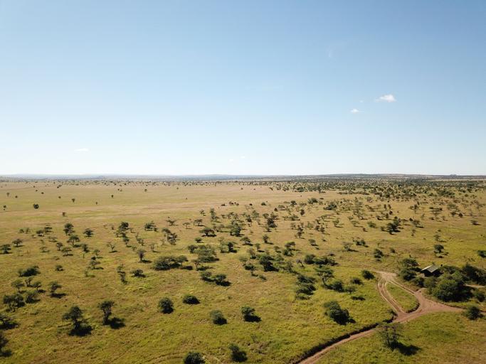 Kananga Special Tented Camp, Serengeti