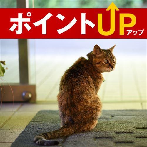 Anabara Onsen Okina Ryokan (Stay with Pet), Fukushima