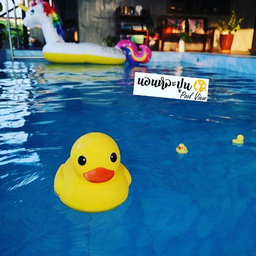 Non La-poon pool view, Muang Lamphun