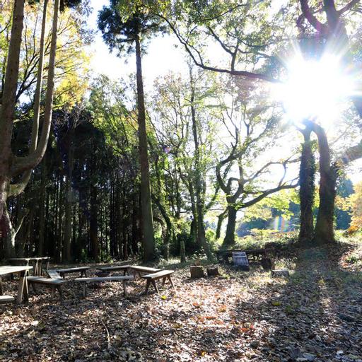 Forest Kitchen Yamagoya Holahoo, Minamiaso