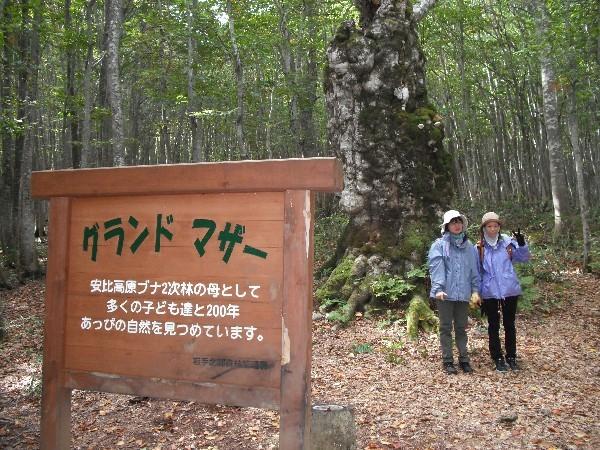 Appi Kogen Kamui no Mori Youth Hostel, Hachimantai