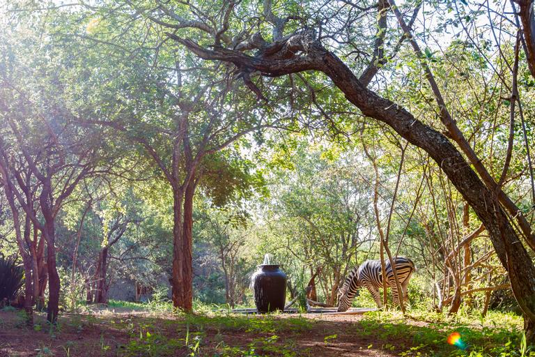 Shikwari Game Reserve, Mopani