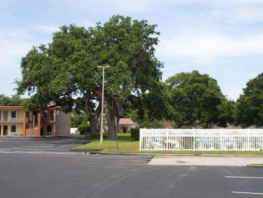 Southern Oaks Inn - Saint Augustine, Saint Johns