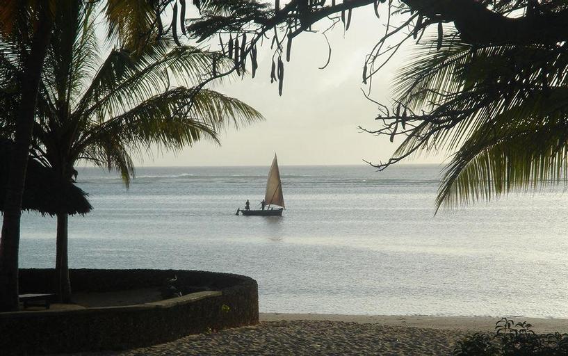 Driftwood, Malindi