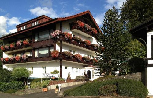 Hotel Zum Weissen Stein, Altenkirchen (Westerwald)