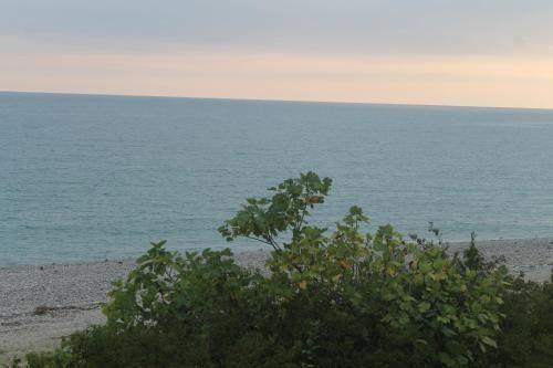 """База отдыха """"Laguna Calda"""", Gudauta"""