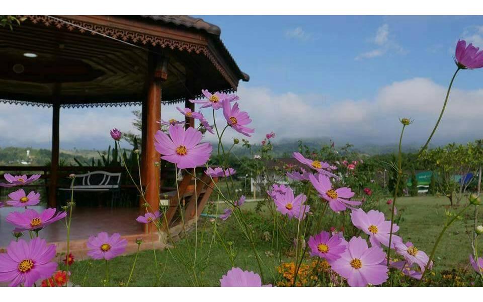 Phupaikaew Resort, Pai