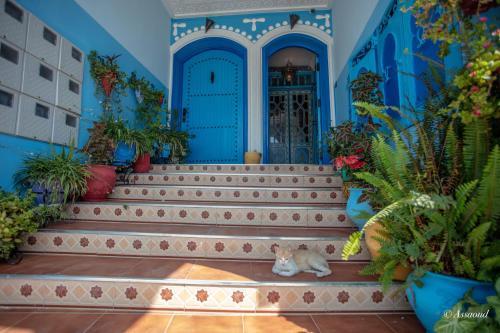Puerta Azul, Chefchaouen