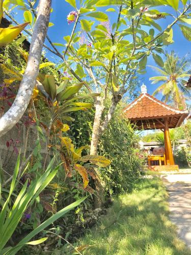 Mujitaky Home, Klungkung