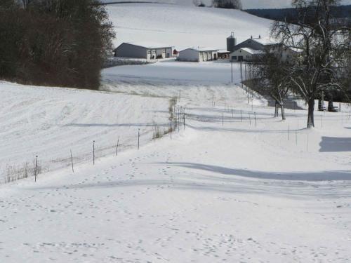 Ferienwohnung am Weinberg, Sigmaringen