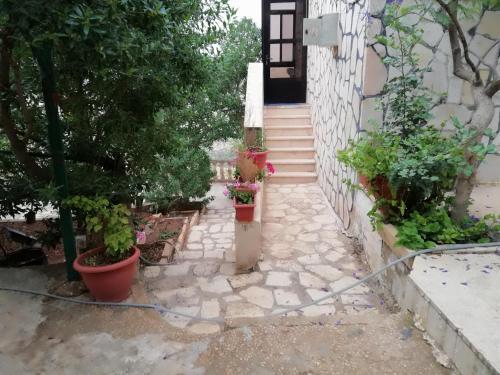 Jerash Happy Farm, Ardhah