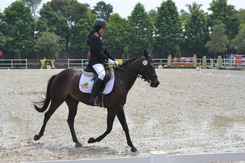 APM Equestrian Resort, Tangerang