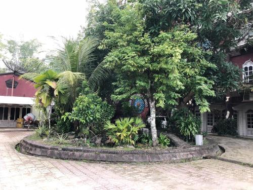 Hotel Pilihan, Sorong