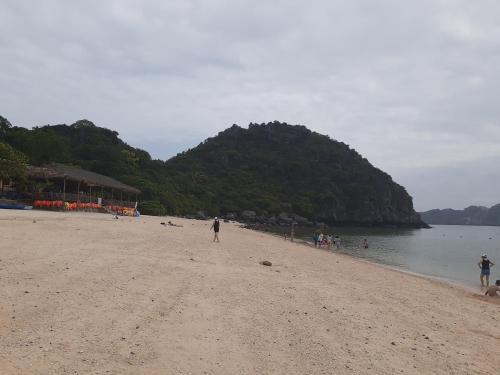 Thu Thuy Cruise - Travel, Cát Hải