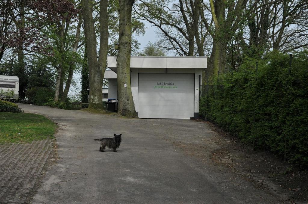 B&B Op de Brabantse Wal, Bergen op Zoom